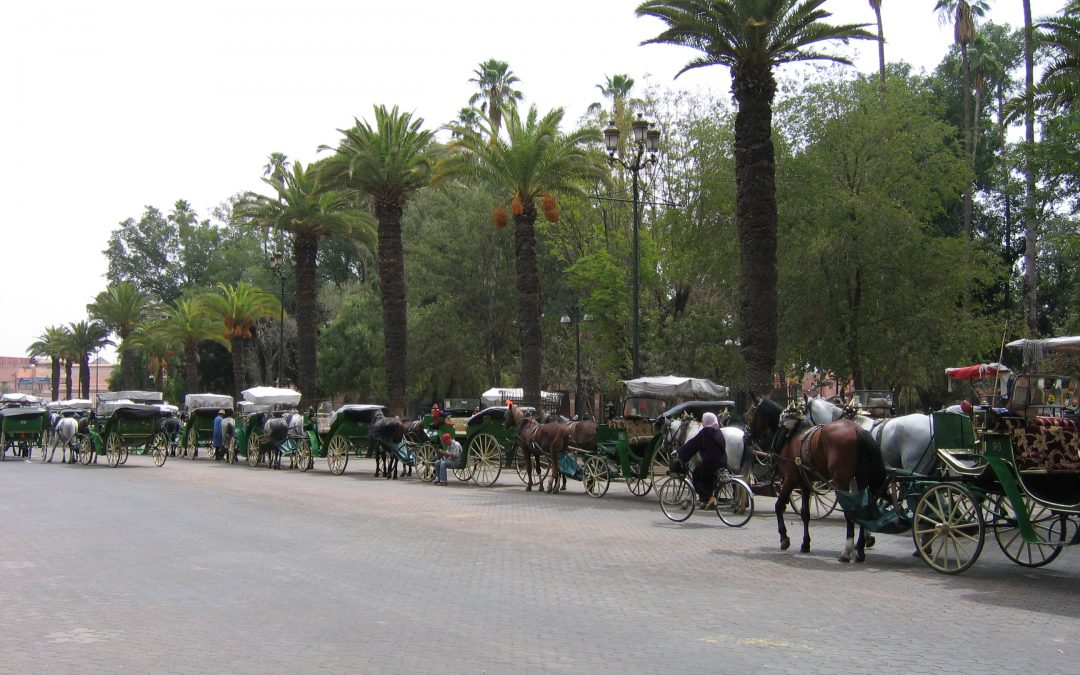 Tour Marrakech-Desert 2 Days